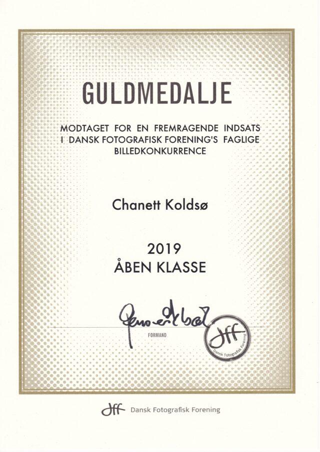 Guldmedalje ÅBEN KLASSE